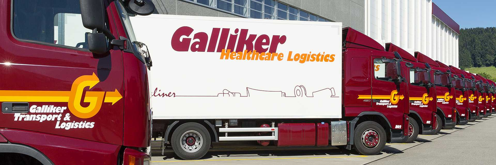 Galliker Transport Logistik TopPicture 085