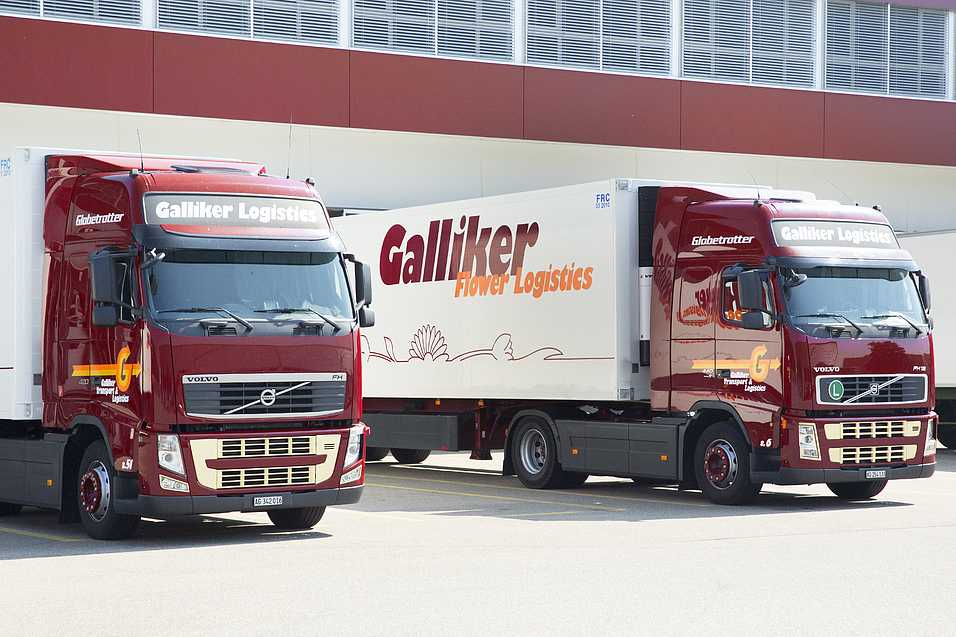 Galliker Transport Logistik Picture097
